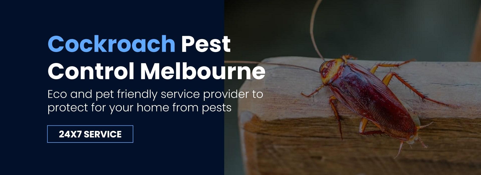 Cockroach Pest Control Melbourne
